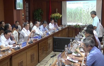 Liên minh HTX Việt Nam làm việc với lãnh đạo tỉnh Quảng Nam
