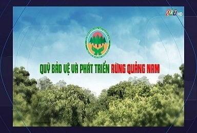 Quỹ bảo vệ và phát triển rừng Quảng Nam (18-9-2021)