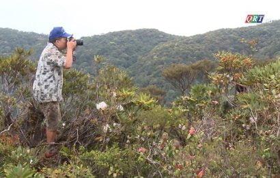 Du lịch xanh – xu hướng tất yếu cho du lịch thời hậu dịch